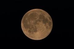 Fotografia astronomica